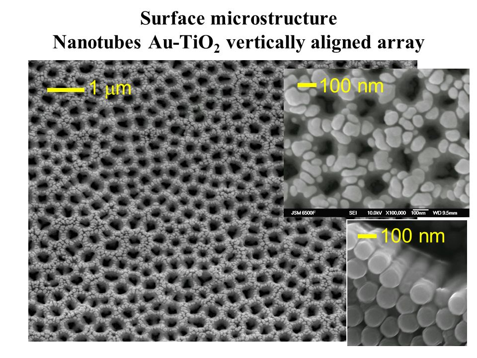 Surface microstructure Nanotubes Au-TiO2 vertically aligned array