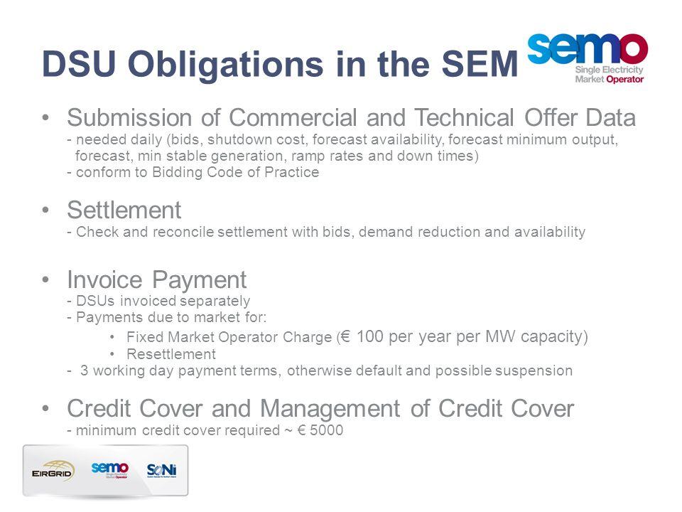 DSU Obligations in the SEM