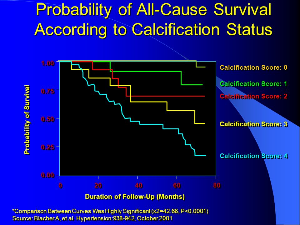 Probability of All-Cause Survival According to Calcification Status