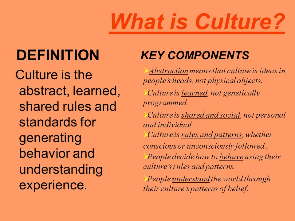 What is Culture DEFINITION