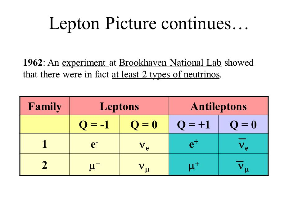 Lepton Picture continues…