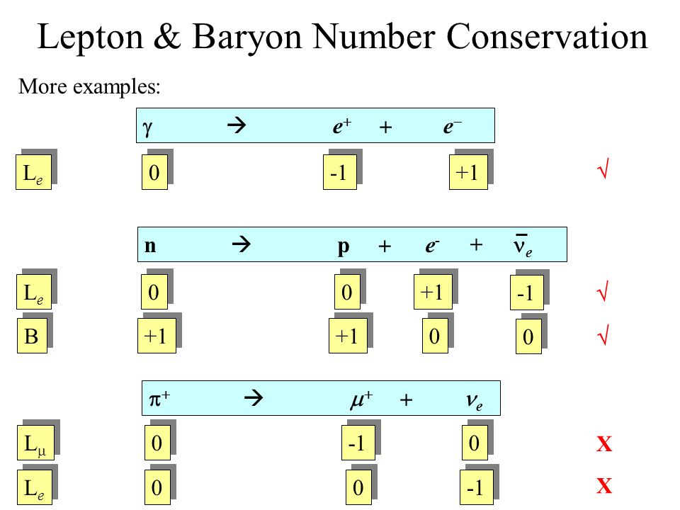 Lepton & Baryon Number Conservation