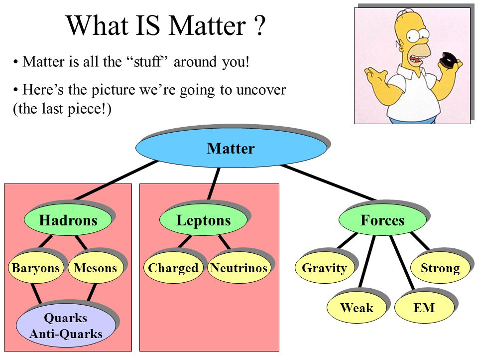 What IS Matter Matter is all the stuff around you!