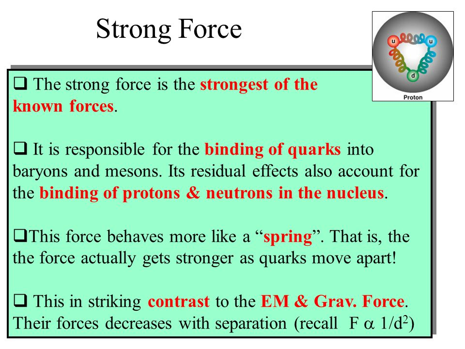 Strong Force The strong force is the strongest of the known forces.