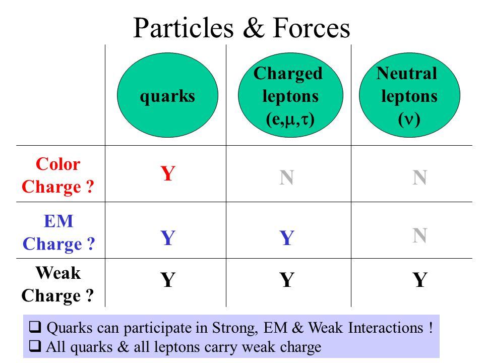 Particles & Forces Y N N Y Y N Y Y Y quarks Charged leptons (e,m,t)