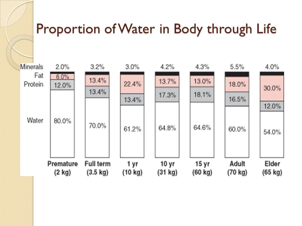 Proportion of Water in Body through Life