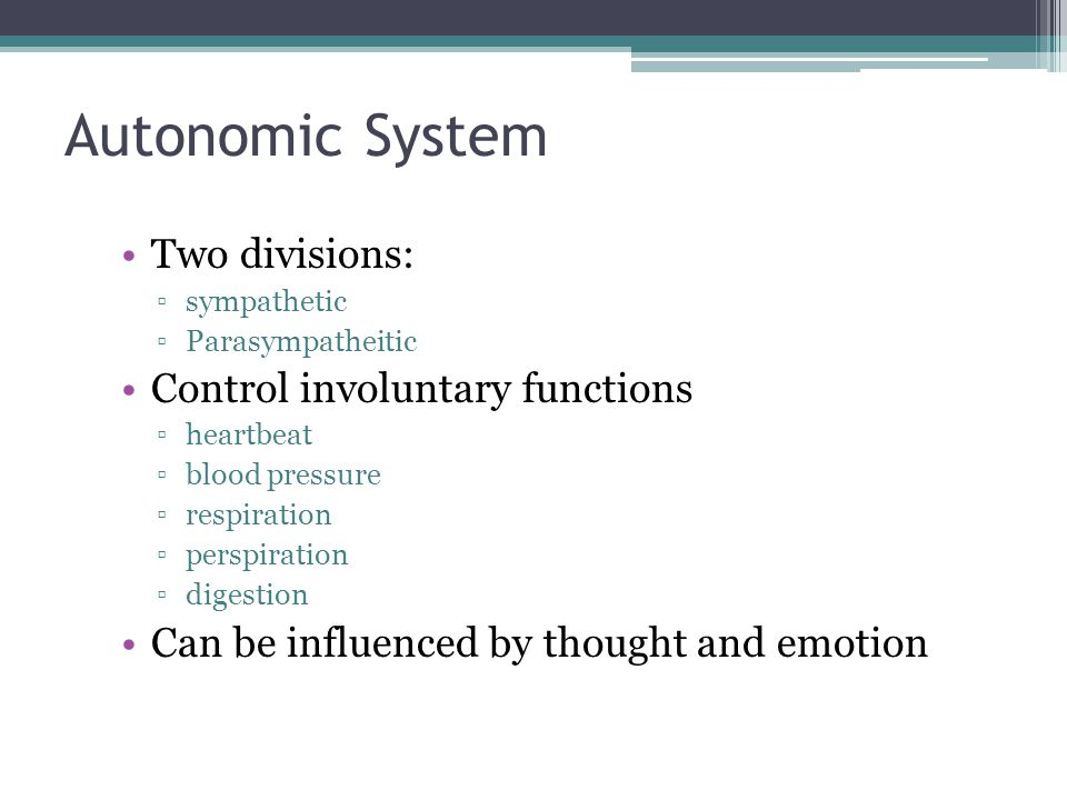 Autonomic System Two divisions: Control involuntary functions