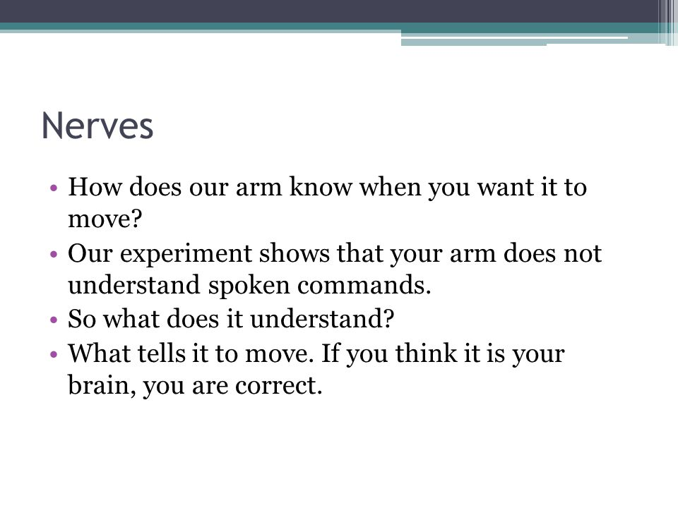 Nerves How does our arm know when you want it to move