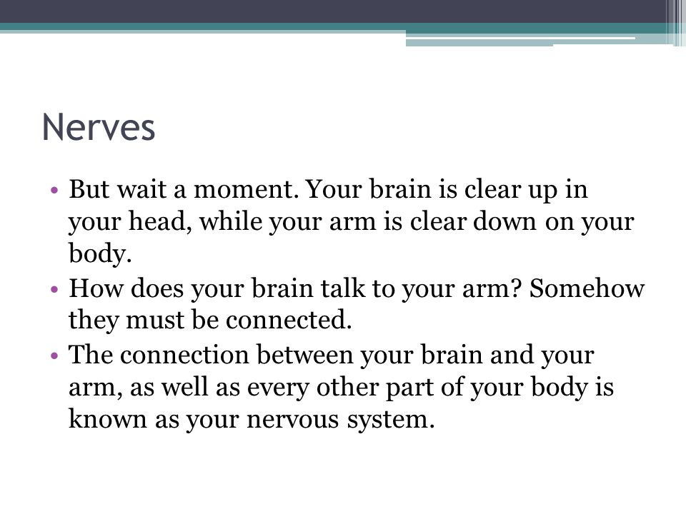 Nerves But wait a moment. Your brain is clear up in your head, while your arm is clear down on your body.
