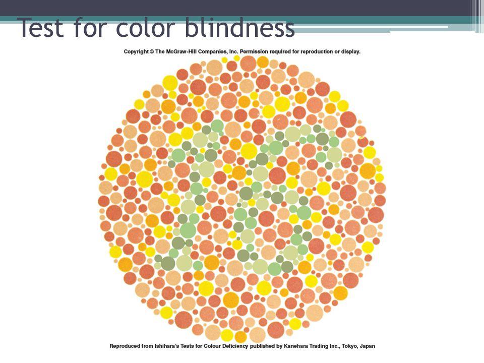 Test for color blindness