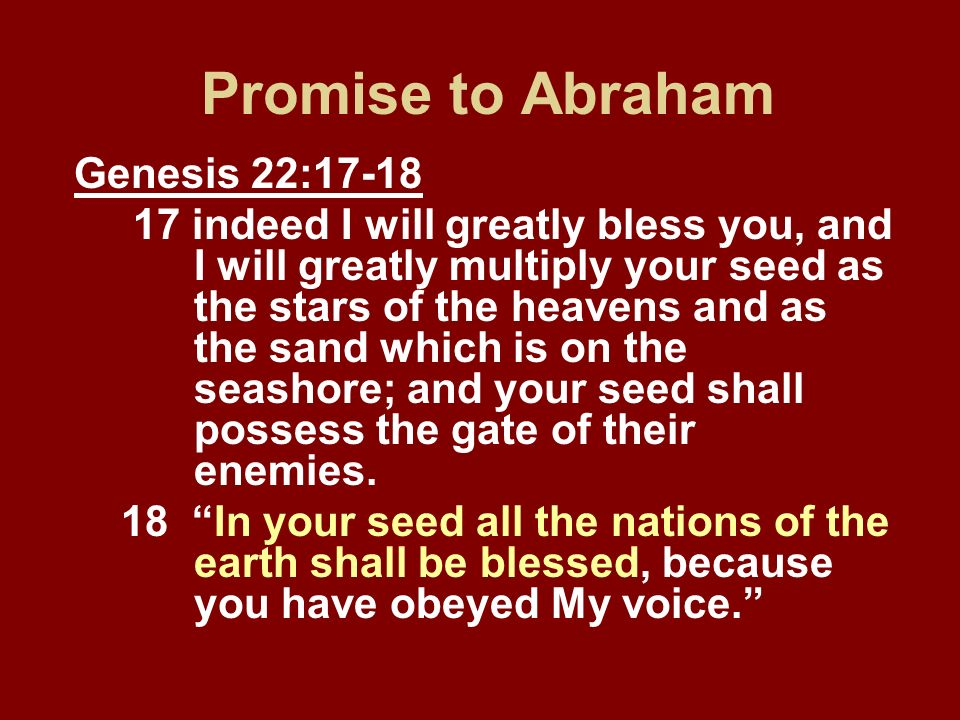 Promise to Abraham Genesis 22:17-18