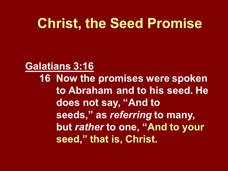 Christ, the Seed Promise