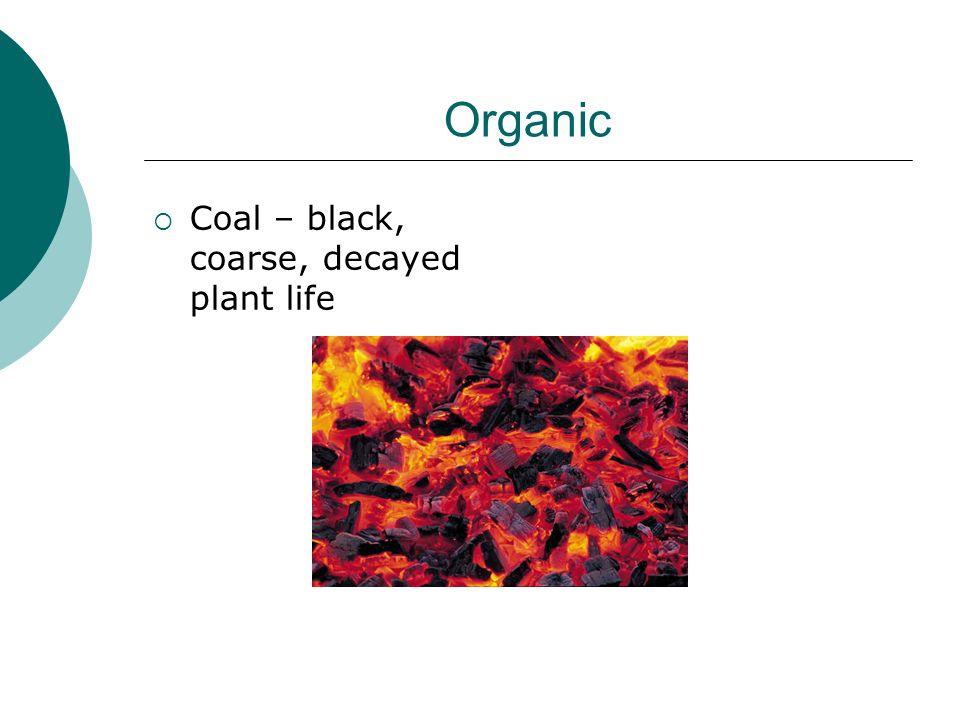 Organic Coal – black, coarse, decayed plant life