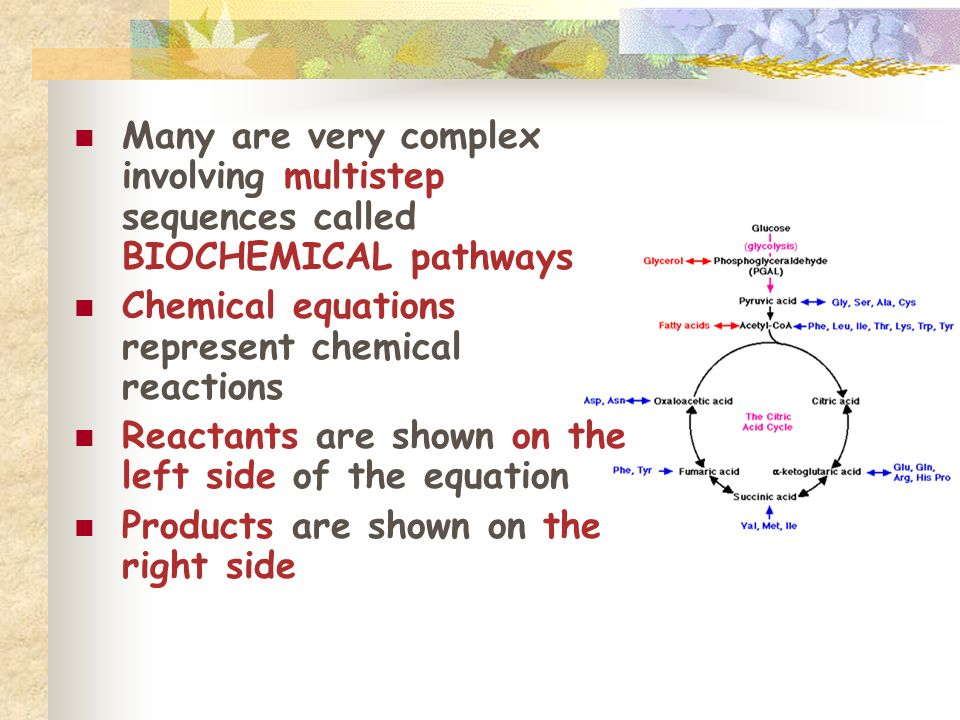 Many are very complex involving multistep sequences called BIOCHEMICAL pathways