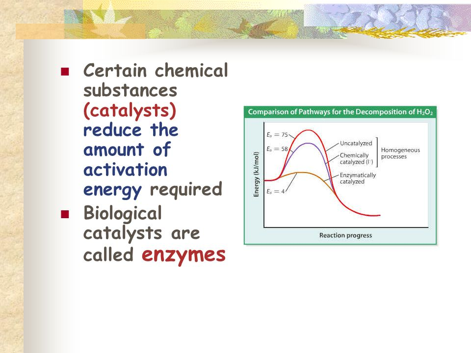 Certain chemical substances (catalysts) reduce the amount of activation energy required
