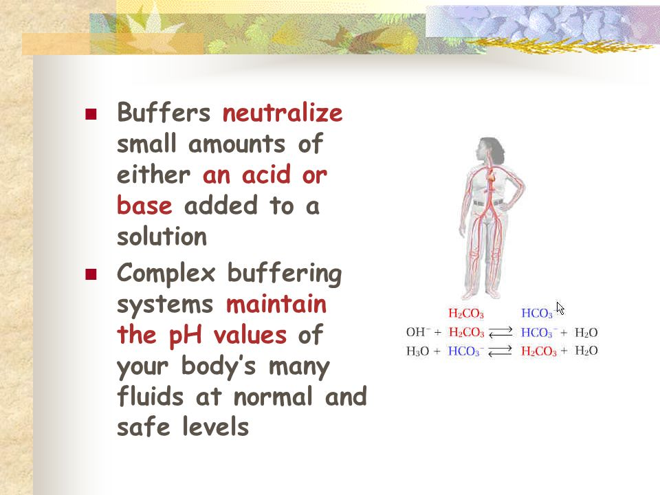 Buffers neutralize small amounts of either an acid or base added to a solution