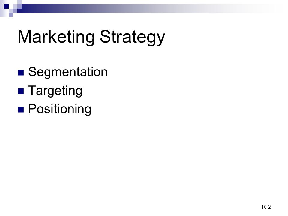 Marketing Strategy Segmentation Targeting Positioning