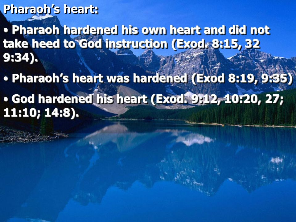 Pharaoh's heart: Pharaoh hardened his own heart and did not take heed to God instruction (Exod. 8:15, 32 9:34).