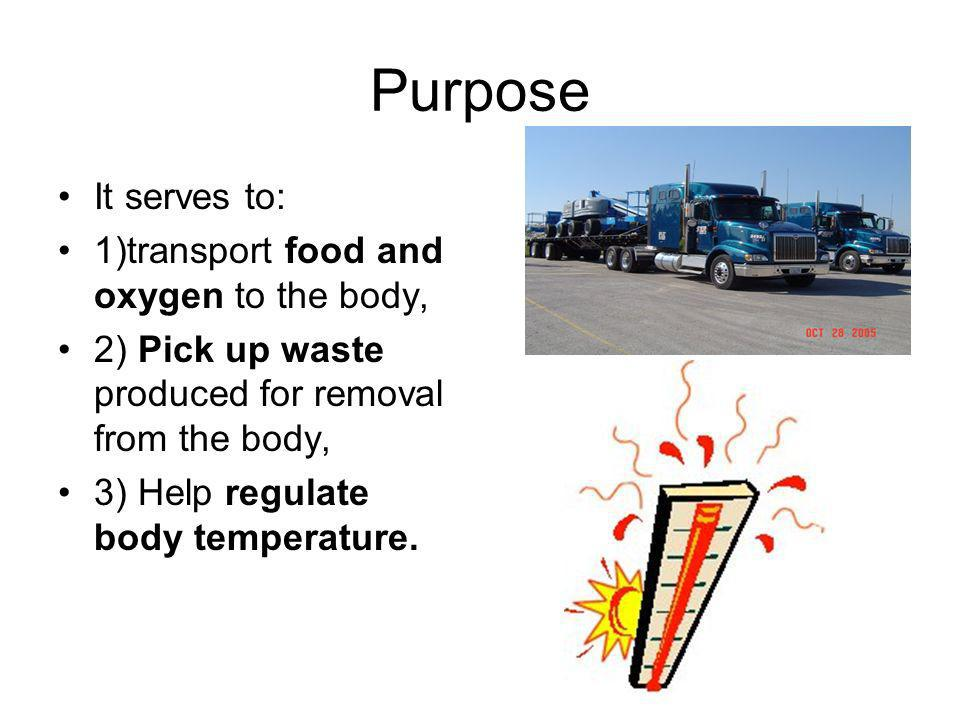 Purpose It serves to: 1)transport food and oxygen to the body,