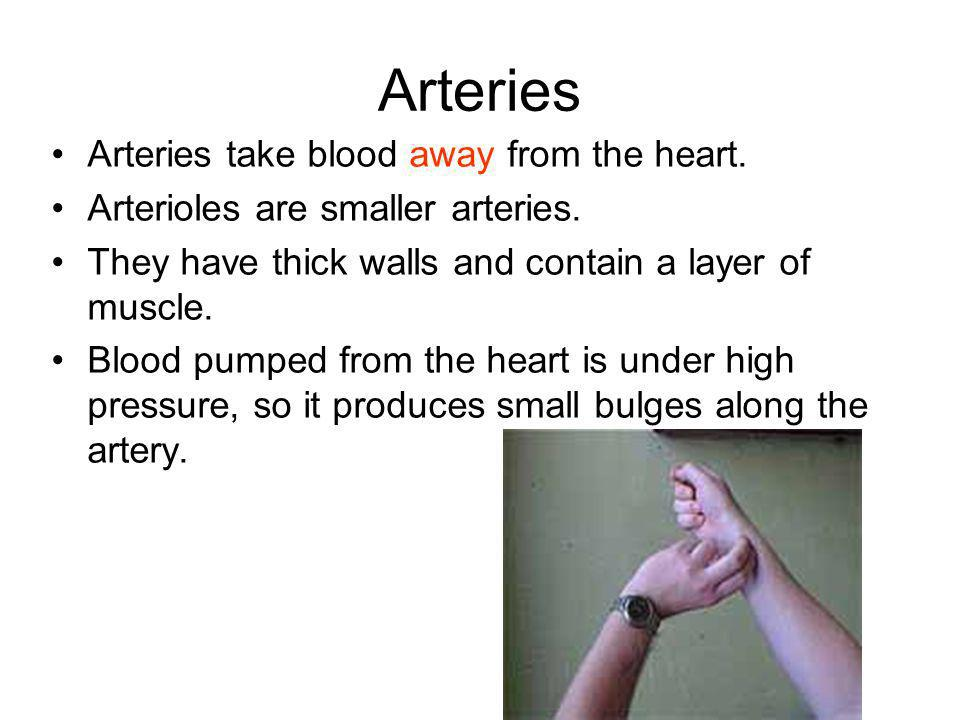 Arteries Arteries take blood away from the heart.
