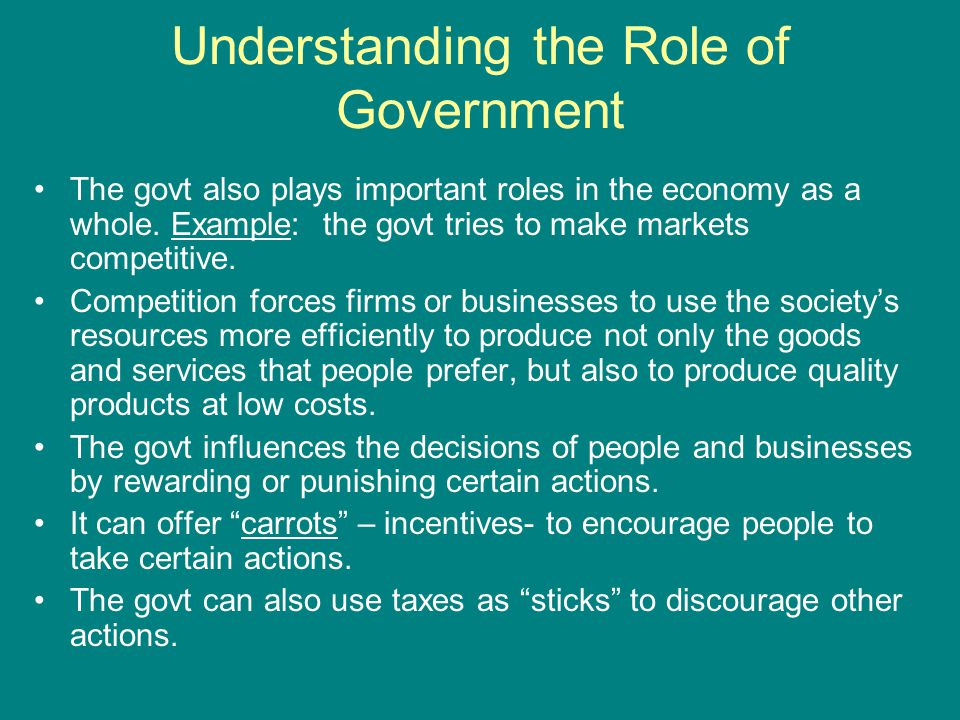 Understanding the Role of Government