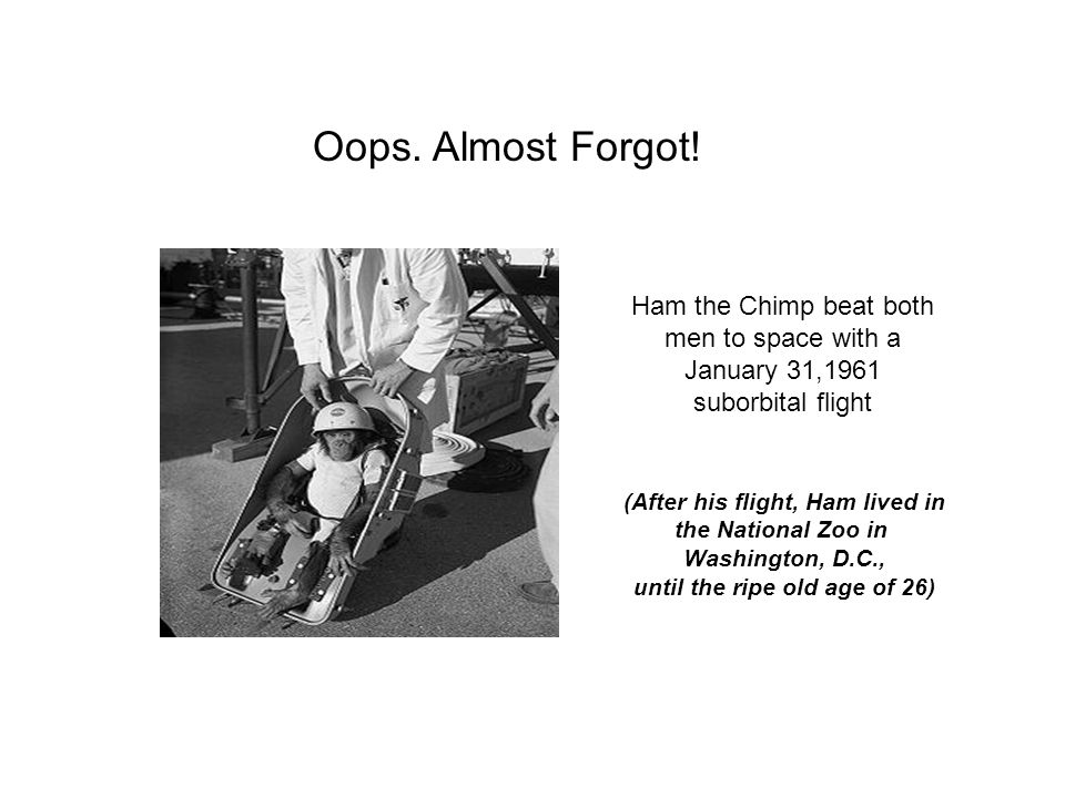 (After his flight, Ham lived in until the ripe old age of 26)