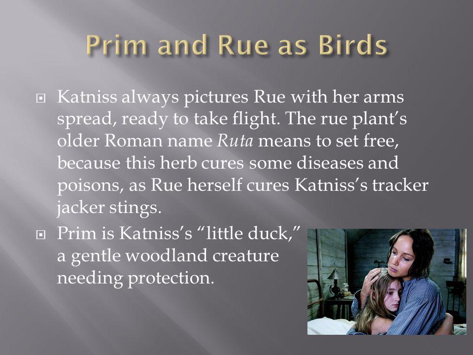 Prim and Rue as Birds