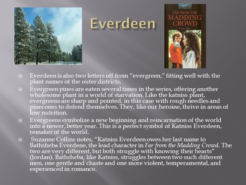 Everdeen Everdeen is also two letters off from evergreen, fitting well with the plant names of the outer districts.