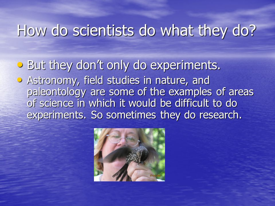 How do scientists do what they do