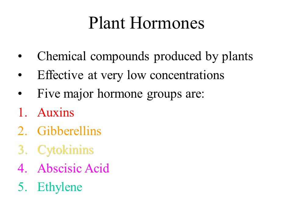 Plant Hormones Chemical compounds produced by plants