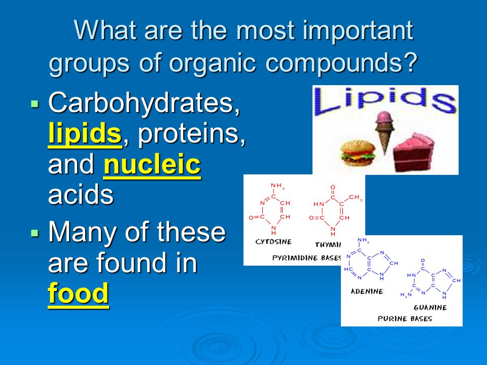 What are the most important groups of organic compounds