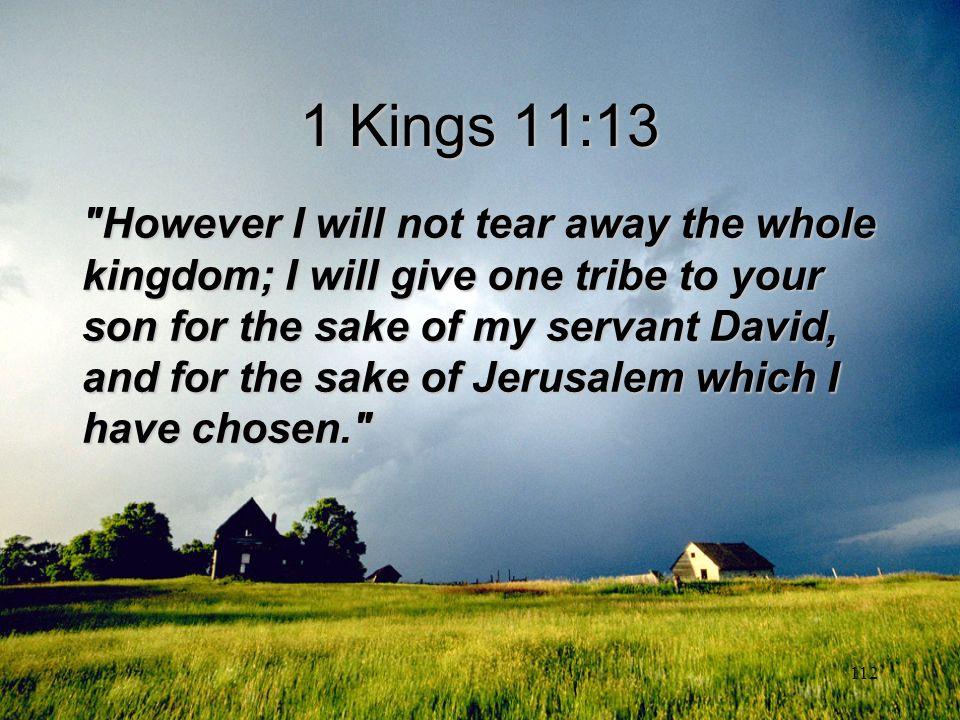 1 Kings 11:13