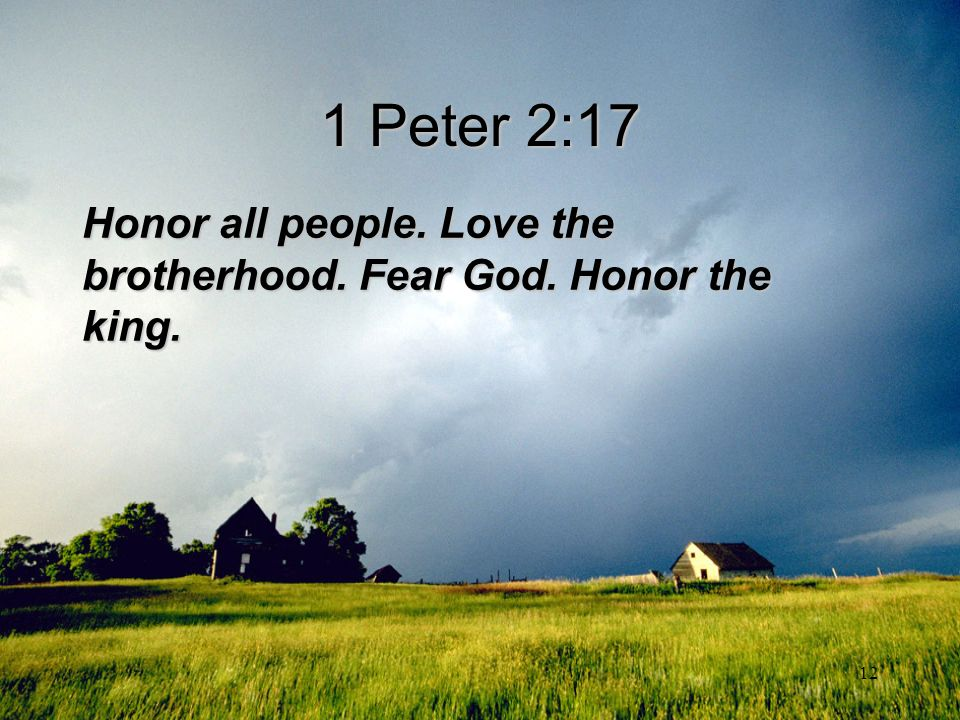 1 Peter 2:17 Honor all people. Love the brotherhood. Fear God. Honor the king.