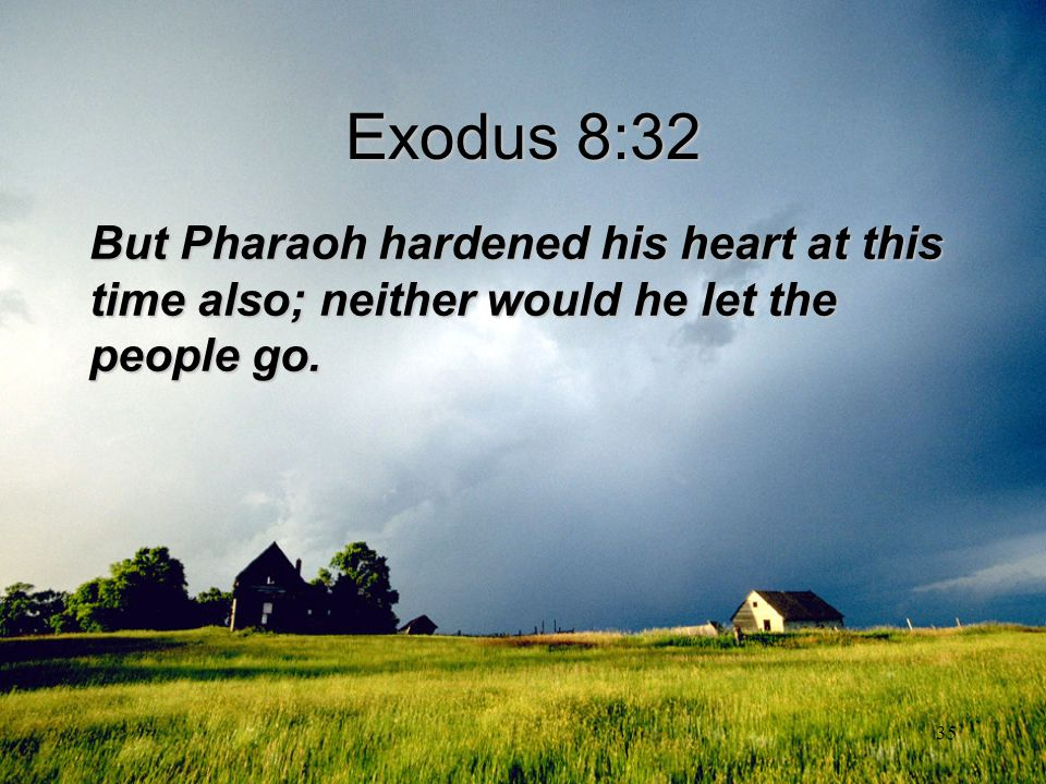Exodus 8:32 But Pharaoh hardened his heart at this time also; neither would he let the people go.