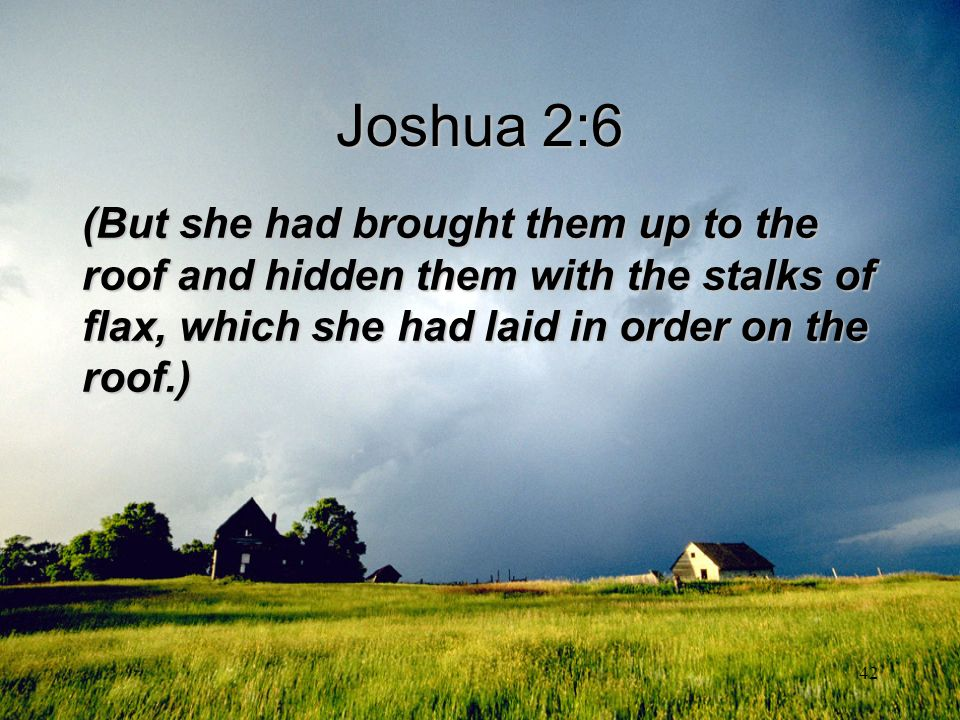 Joshua 2:6 (But she had brought them up to the roof and hidden them with the stalks of flax, which she had laid in order on the roof.)