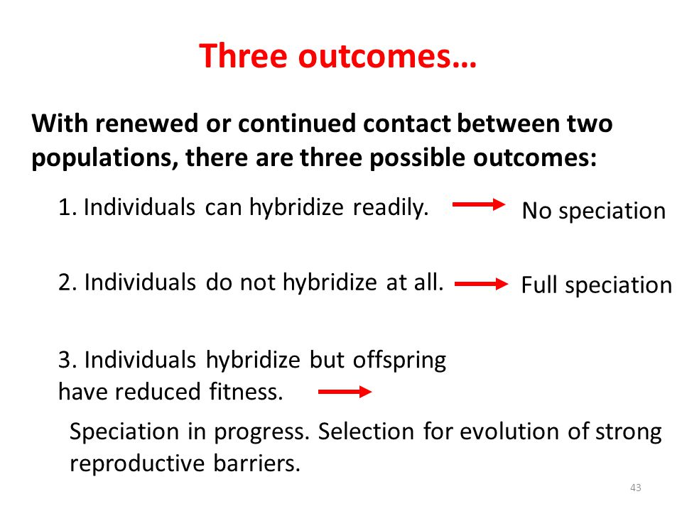 Three outcomes… With renewed or continued contact between two populations, there are three possible outcomes: