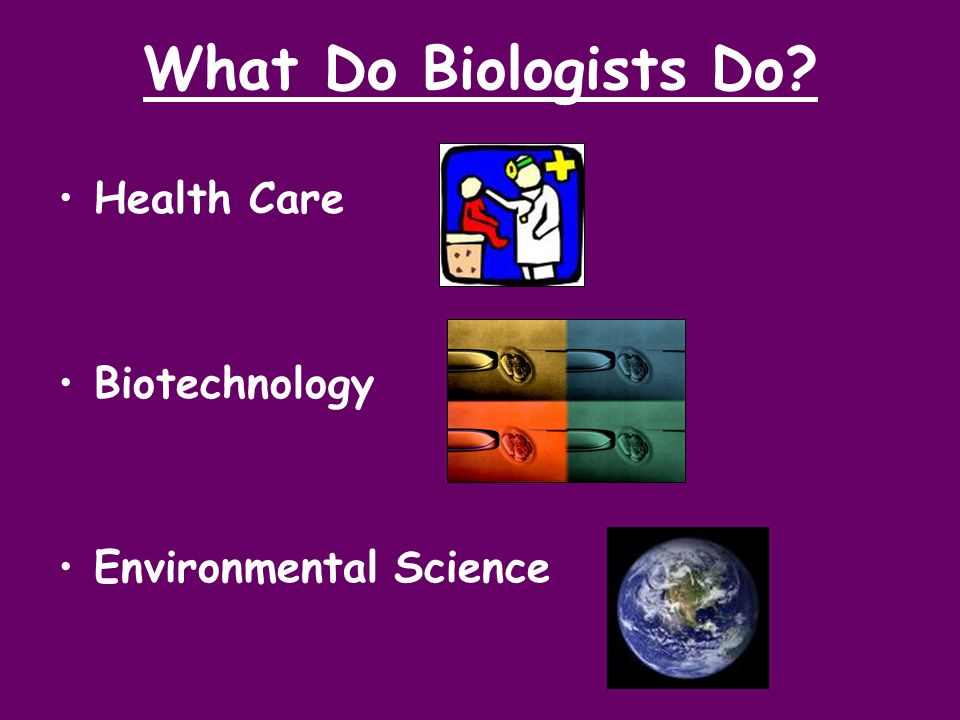 What Do Biologists Do Health Care Biotechnology Environmental Science