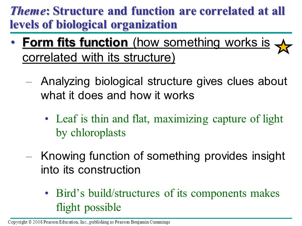 Theme: Structure and function are correlated at all levels of biological organization