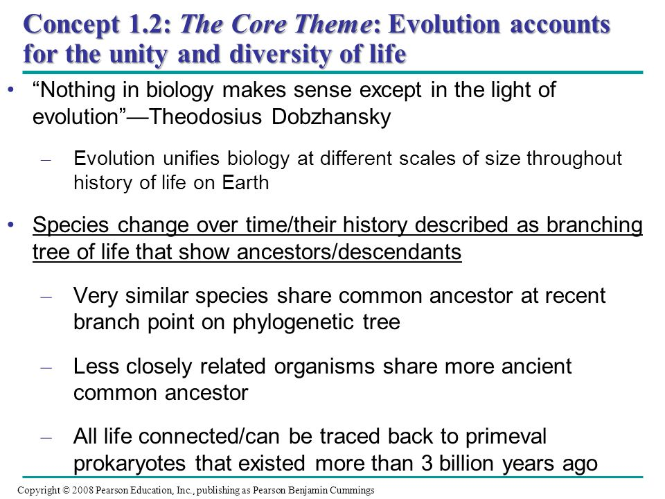 Concept 1.2: The Core Theme: Evolution accounts for the unity and diversity of life
