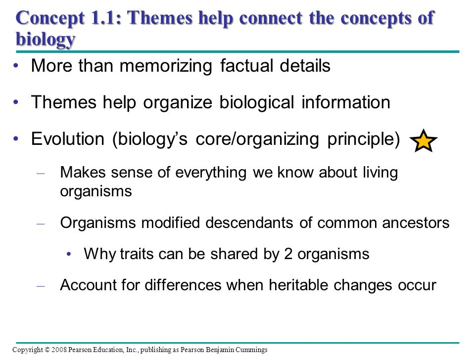 Concept 1.1: Themes help connect the concepts of biology