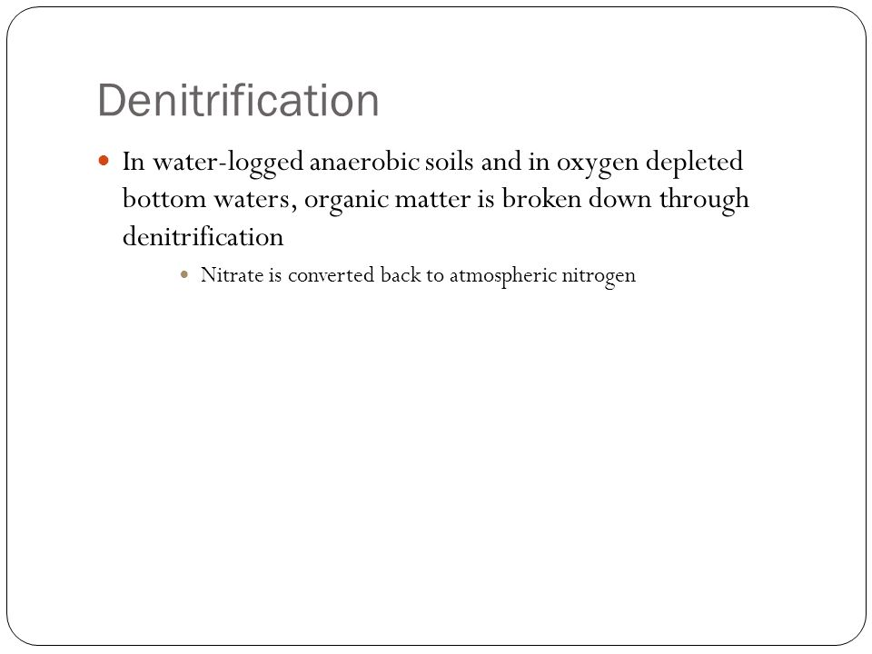 Denitrification In water-logged anaerobic soils and in oxygen depleted bottom waters, organic matter is broken down through denitrification.