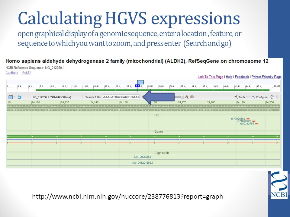 Calculating HGVS expressions open graphical display of a genomic sequence, enter a location , feature, or sequence to which you want to zoom, and press enter (Search and go)