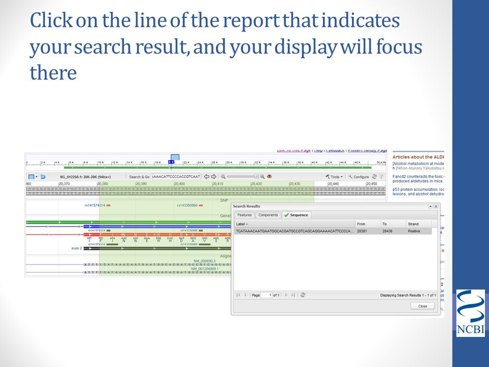 Click on the line of the report that indicates your search result, and your display will focus there