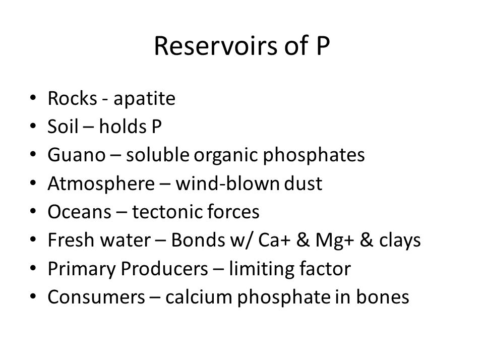 Reservoirs of P Rocks - apatite Soil – holds P