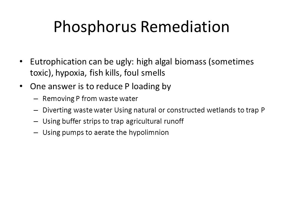 Phosphorus Remediation