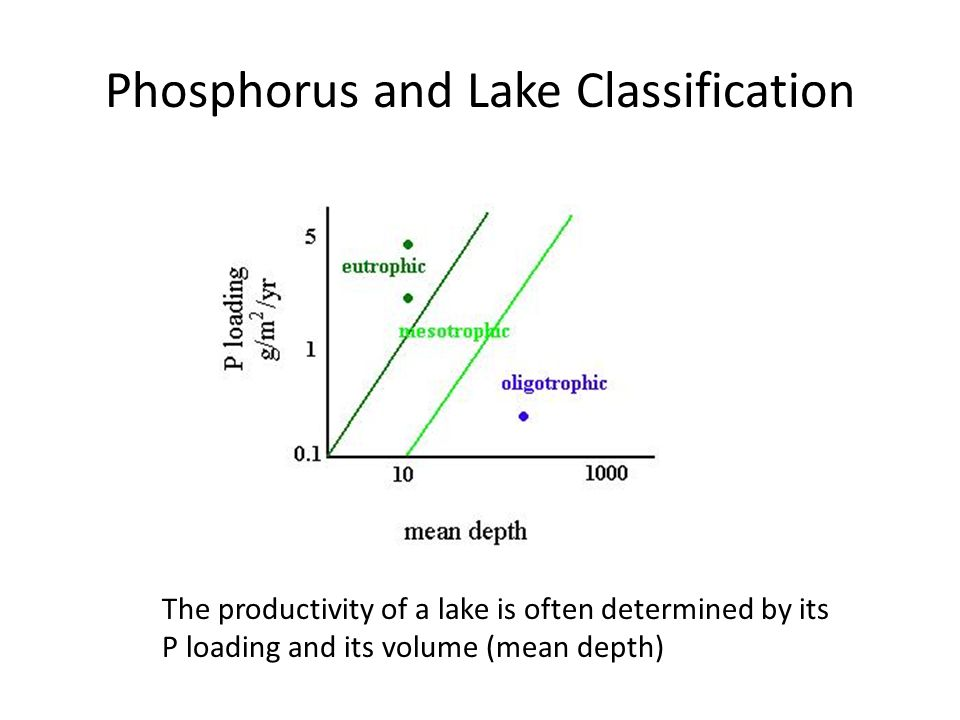Phosphorus and Lake Classification