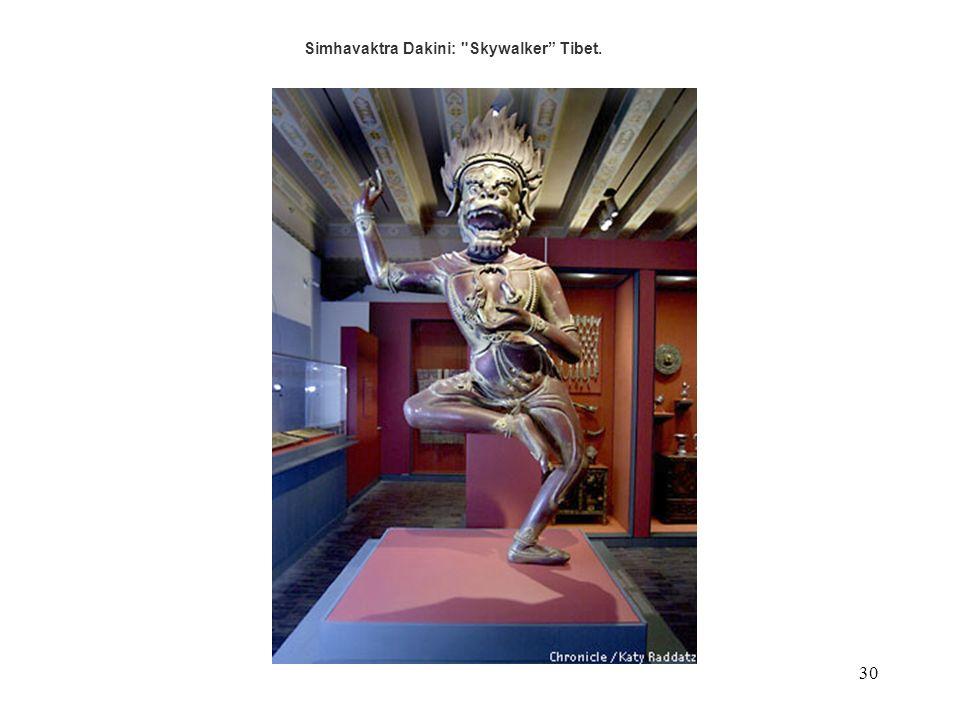 Simhavaktra Dakini: Skywalker Tibet.