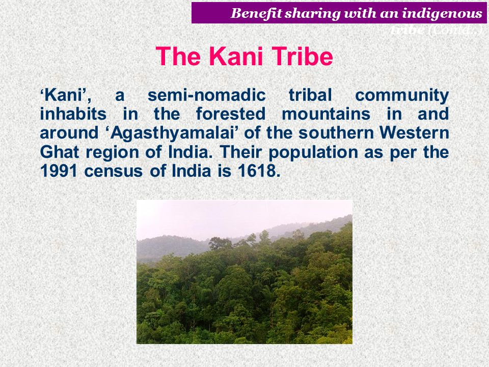 Benefit sharing with an indigenous tribe (Contd..)