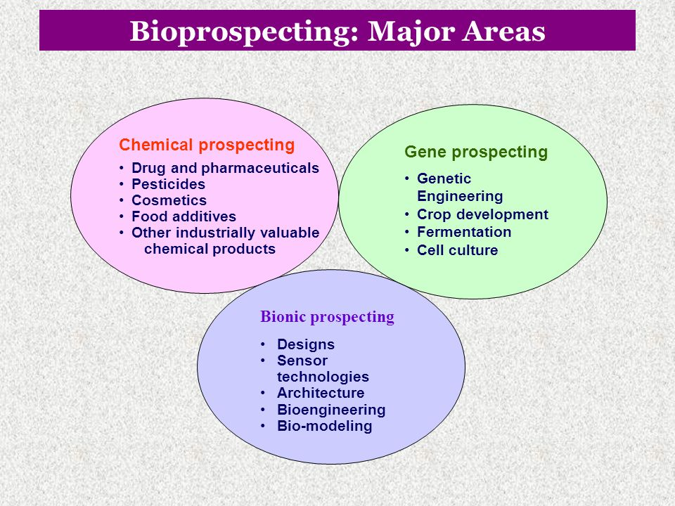 Bioprospecting: Major Areas
