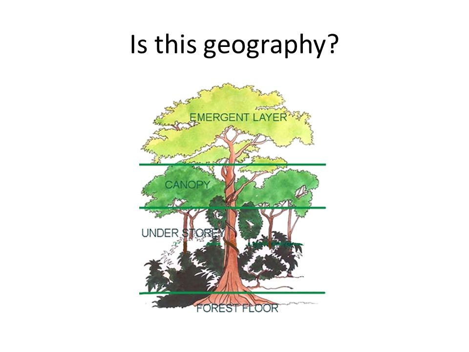 Is this geography